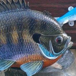 Fish decoy by Troy Helget