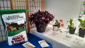 GardenParty2015-2
