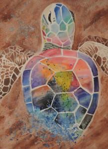 Rainbow Sand Turtle